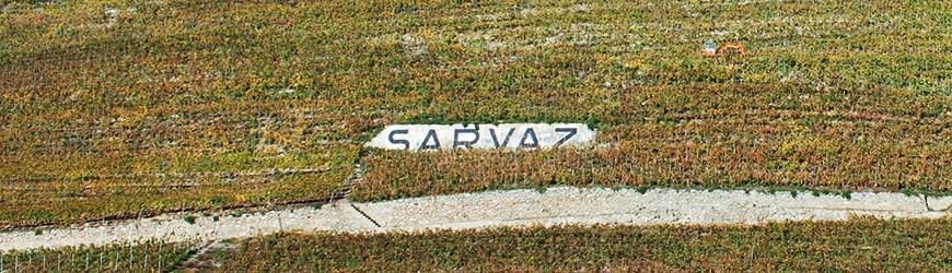 Weingut Sarvaz